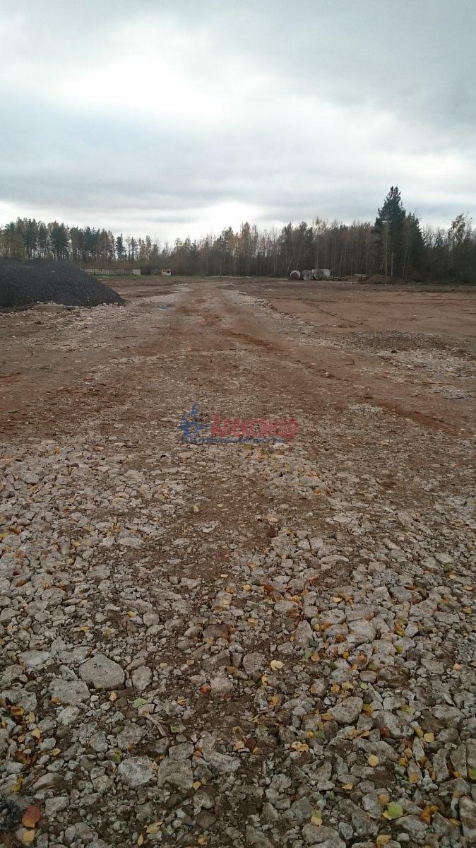 Земельный участок (30000м2) на продажу — фото 7 из 8