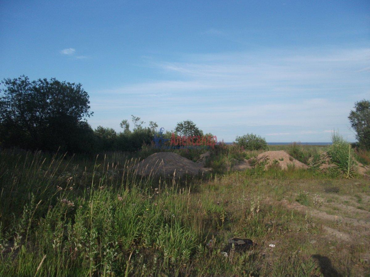 Земельный участок (0м2) на продажу — фото 7 из 9