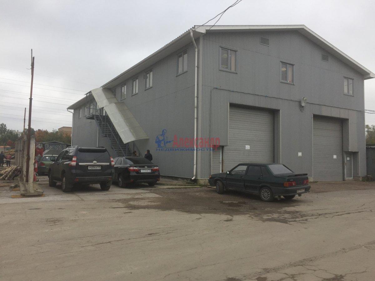 Офис (25м2) в аренду — фото 3 из 3