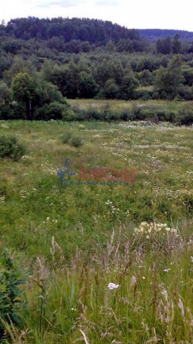 Земельный участок (0м2) в аренду — фото 2 из 3