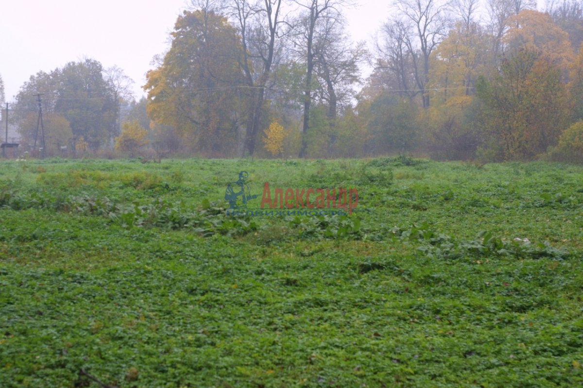 Земельный участок (0м2) на продажу — фото 9 из 15
