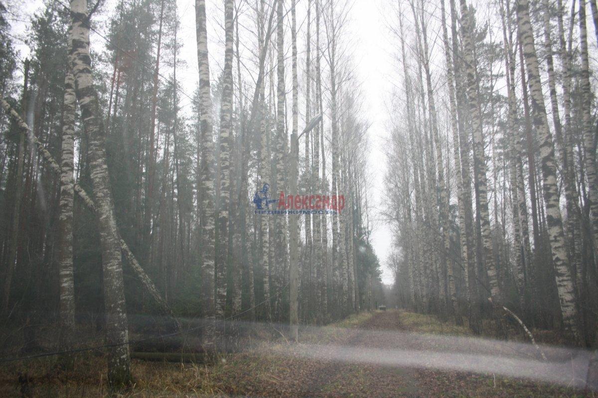 Земельный участок (2610м2) на продажу — фото 2 из 3