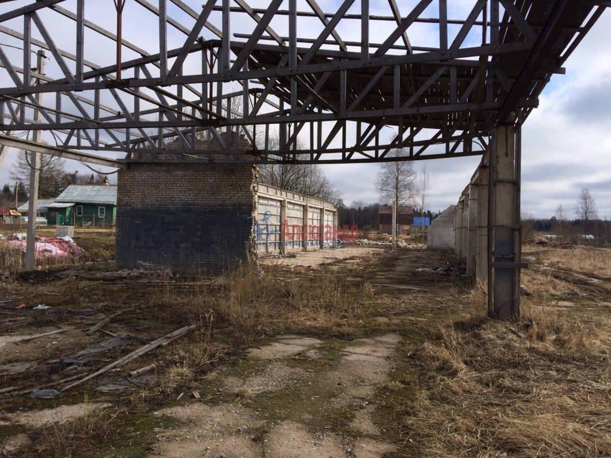 Земельный участок (1000м2) на продажу — фото 4 из 6