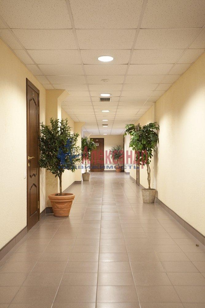 Офис (35м2) в аренду — фото 2 из 3