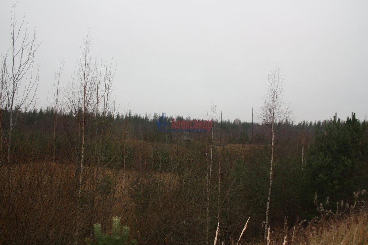 Земельный участок (2610м2) на продажу — фото 3 из 3
