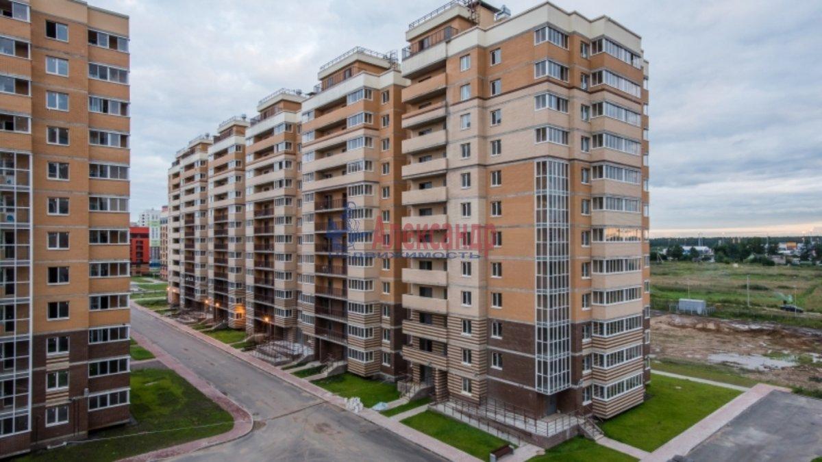 цдс официальный сайт санкт-петербург новые горизонты эту