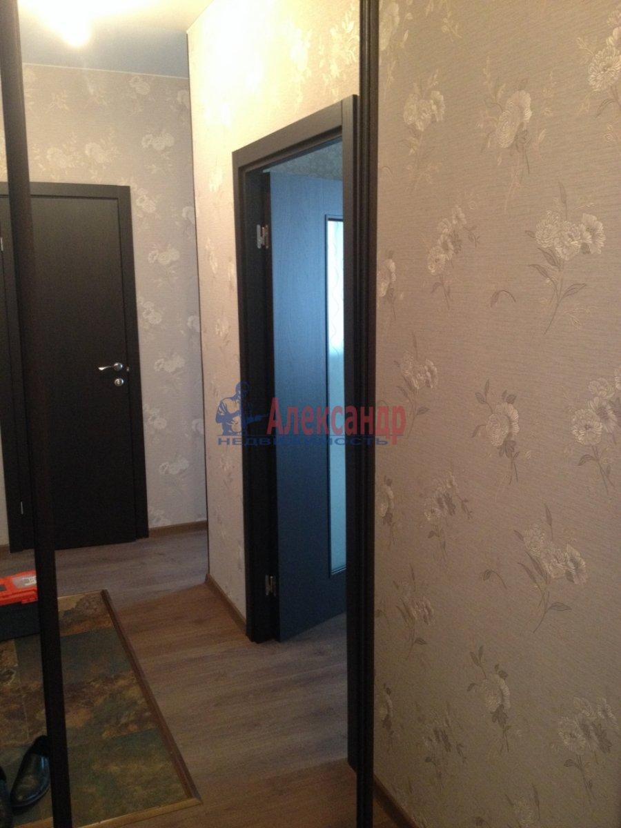 1-комнатная квартира (44м2) в аренду по адресу Просвещения просп., 99— фото 12 из 17