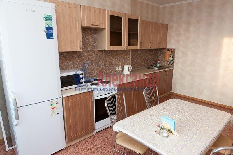 1-комнатная квартира (45м2) в аренду по адресу Просвещения просп., 91— фото 2 из 3