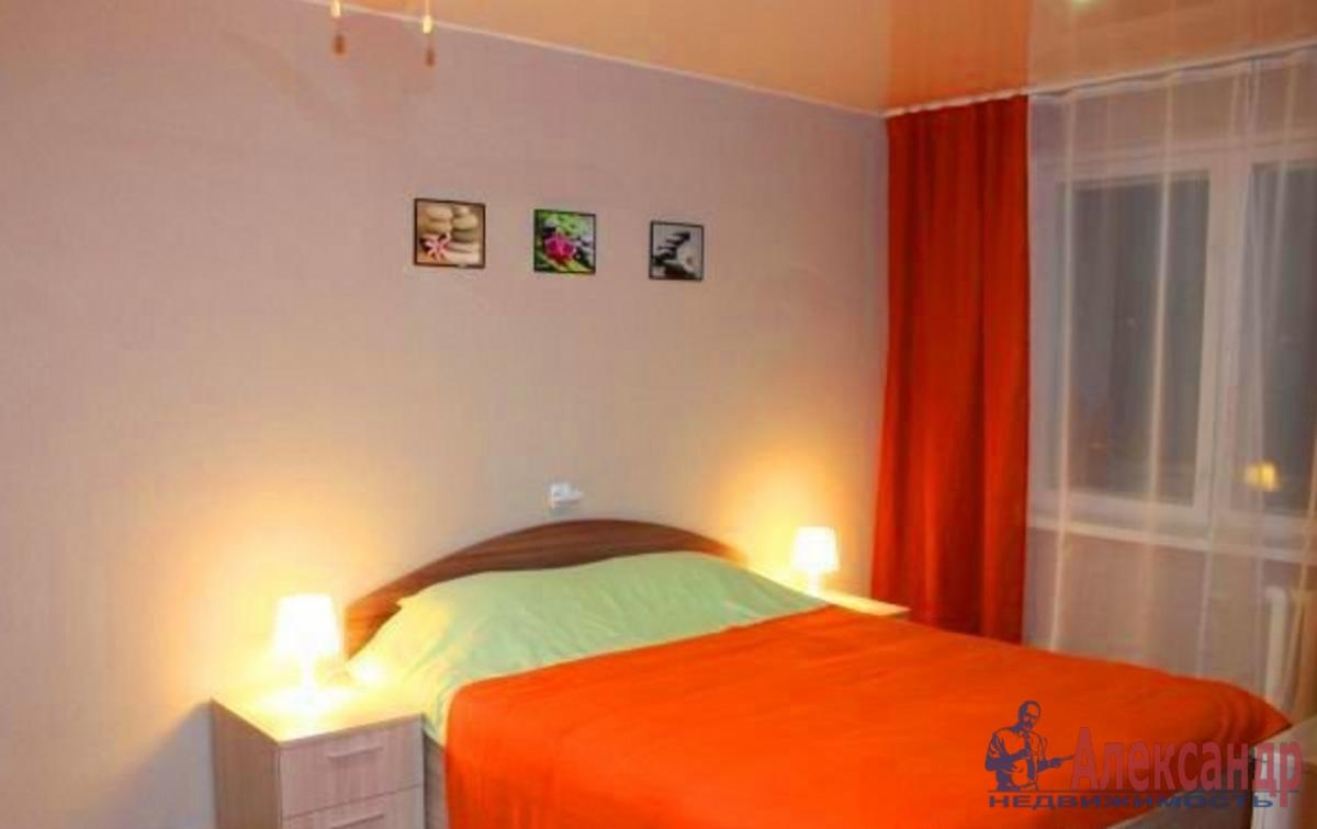 2-комнатная квартира (46м2) в аренду по адресу 2 Муринский пр., 10— фото 2 из 2