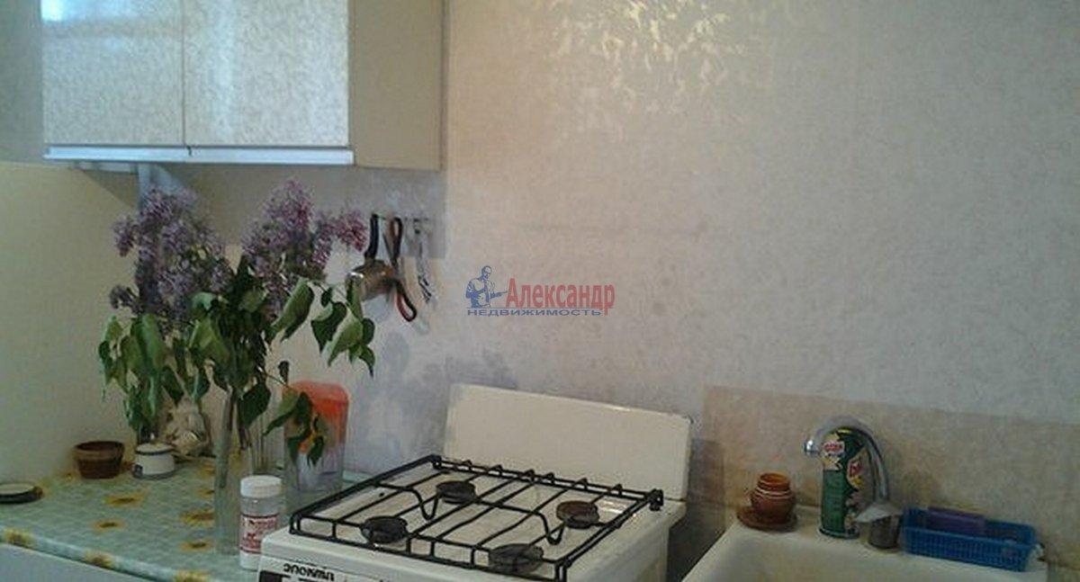 1-комнатная квартира (33м2) в аренду по адресу Пушкин г.— фото 3 из 4