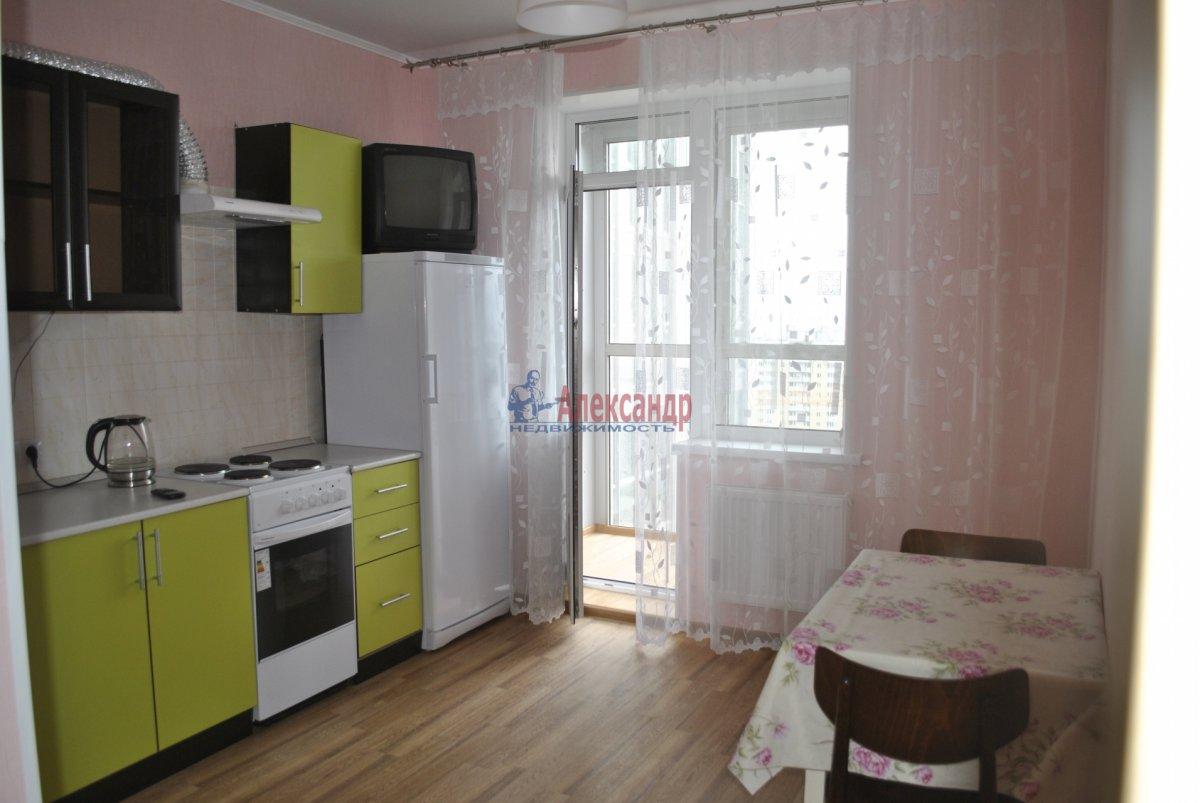 1-комнатная квартира (44м2) в аренду по адресу Лыжный пер., 4— фото 16 из 19