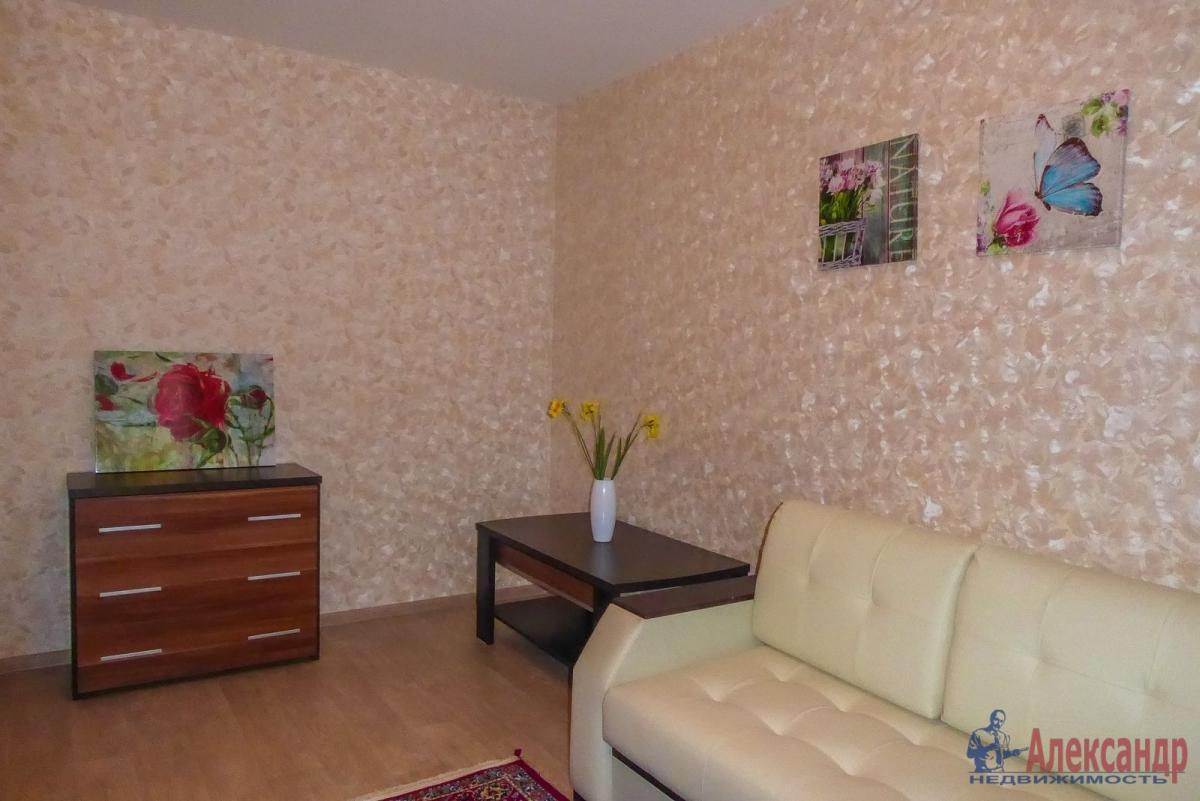 2-комнатная квартира (55м2) в аренду по адресу Гаккелевская ул., 27— фото 6 из 18