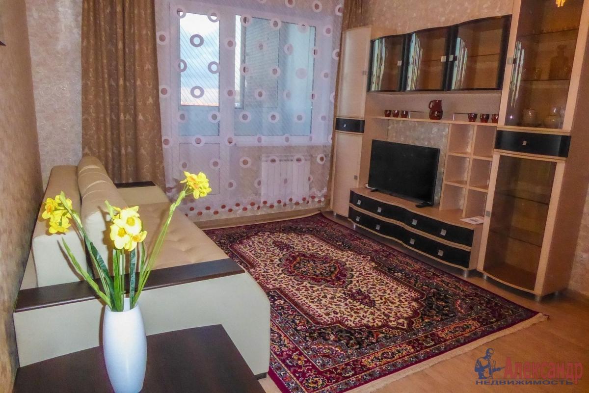 2-комнатная квартира (55м2) в аренду по адресу Гаккелевская ул., 27— фото 4 из 18