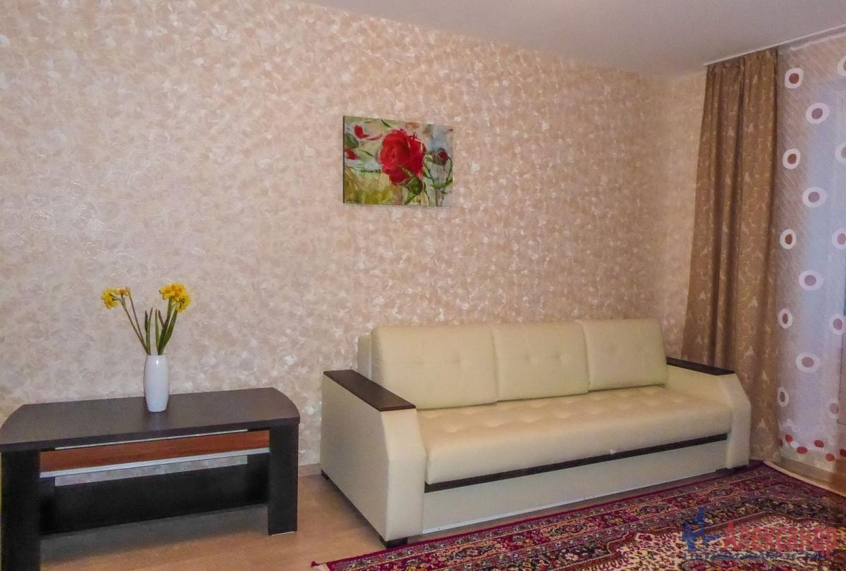 2-комнатная квартира (55м2) в аренду по адресу Гаккелевская ул., 27— фото 5 из 18