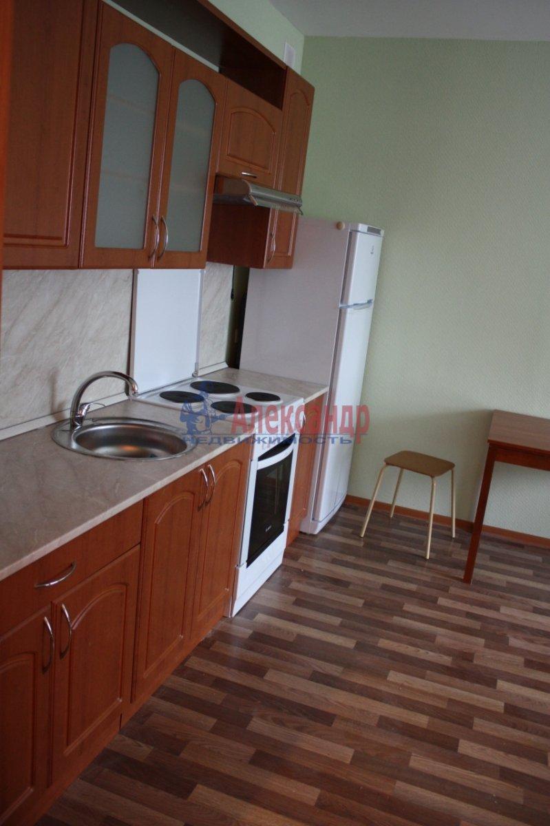 1-комнатная квартира (30м2) в аренду по адресу Новое Девяткино дер., Флотская ул., 9— фото 2 из 3