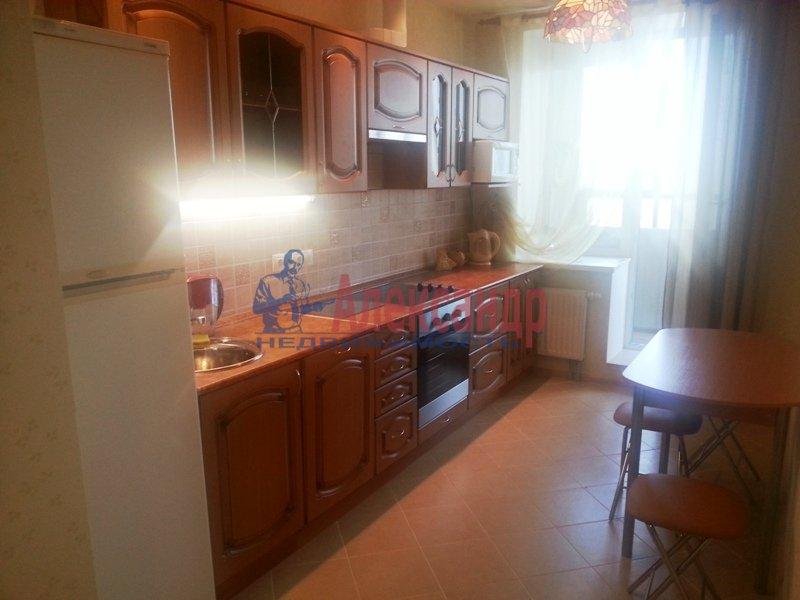 1-комнатная квартира (45м2) в аренду по адресу Фермское шос., 20— фото 2 из 13