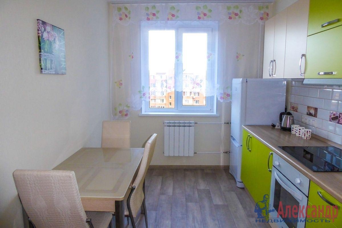 2-комнатная квартира (55м2) в аренду по адресу Гаккелевская ул., 27— фото 7 из 18