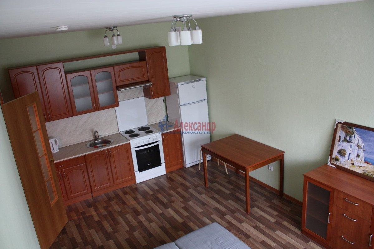 1-комнатная квартира (30м2) в аренду по адресу Новое Девяткино дер., Флотская ул., 9— фото 1 из 3
