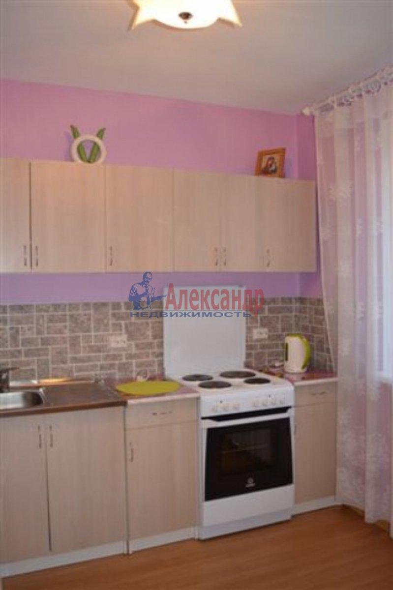 1-комнатная квартира (40м2) в аренду по адресу Бутлерова ул., 40— фото 3 из 3