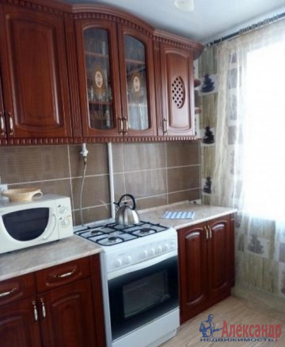 1-комнатная квартира (45м2) в аренду по адресу Московский просп., 151— фото 2 из 3