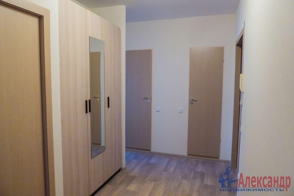 2-комнатная квартира (55м2) в аренду по адресу Гаккелевская ул., 27— фото 11 из 18