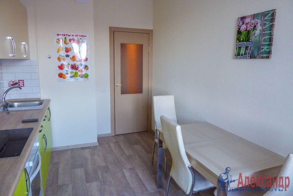 2-комнатная квартира (55м2) в аренду по адресу Гаккелевская ул., 27— фото 10 из 18