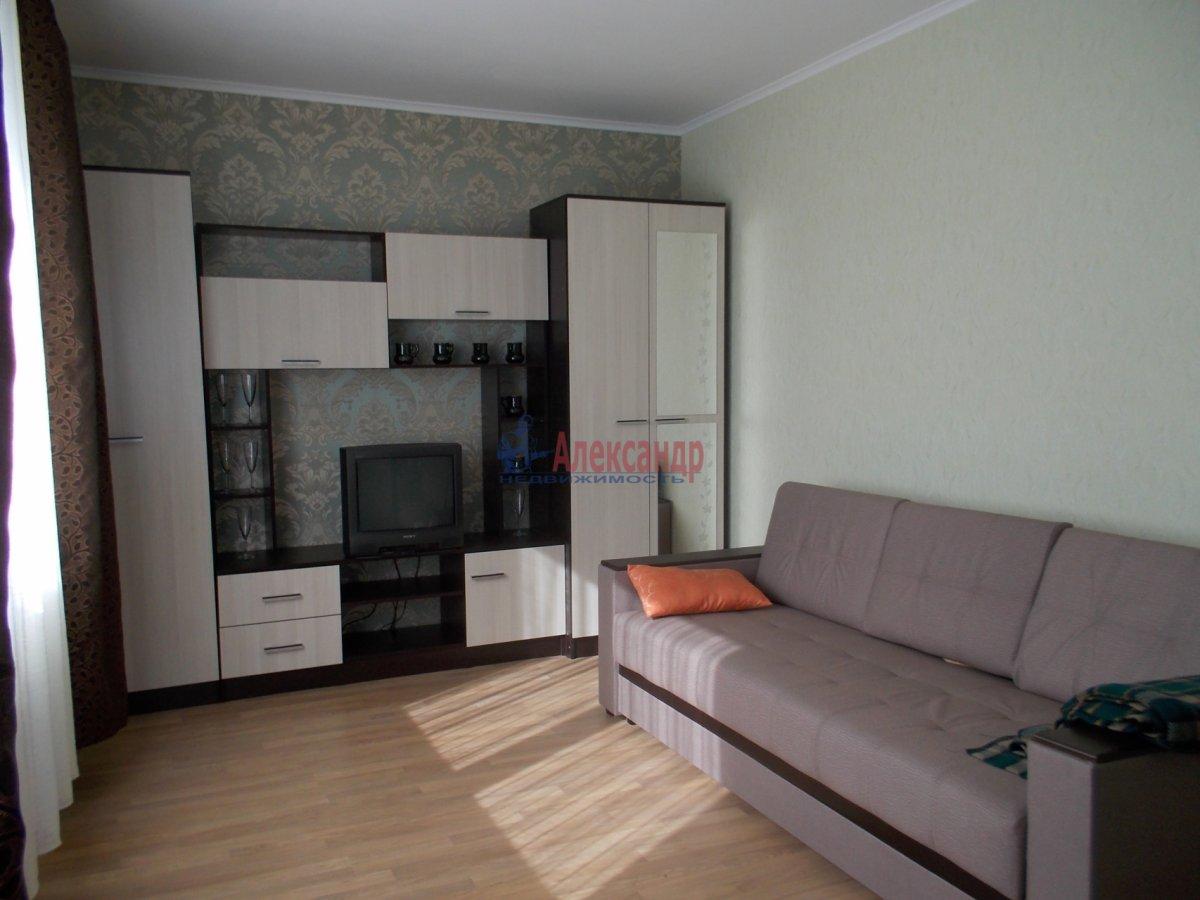 1-комнатная квартира (39м2) в аренду по адресу Кушелевская дор., 5— фото 1 из 9
