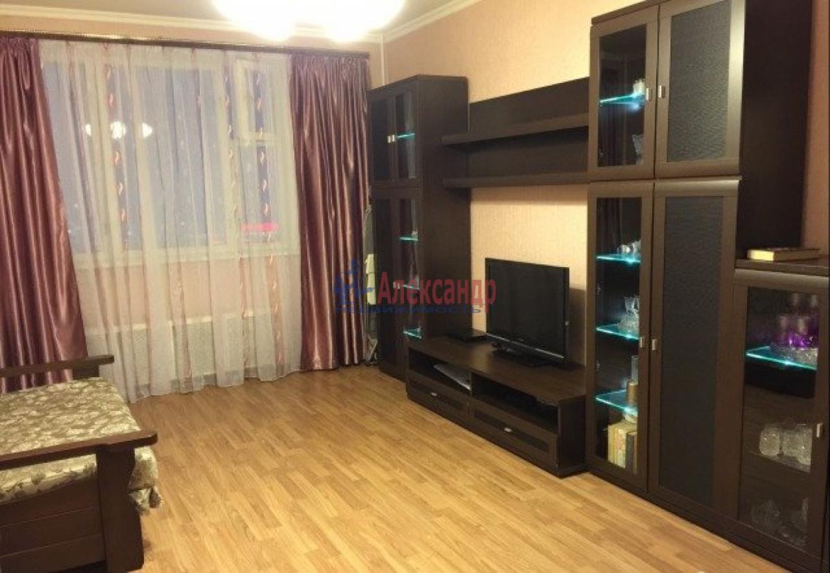 1-комнатная квартира (32м2) в аренду по адресу Ветеранов пр., 76— фото 1 из 4