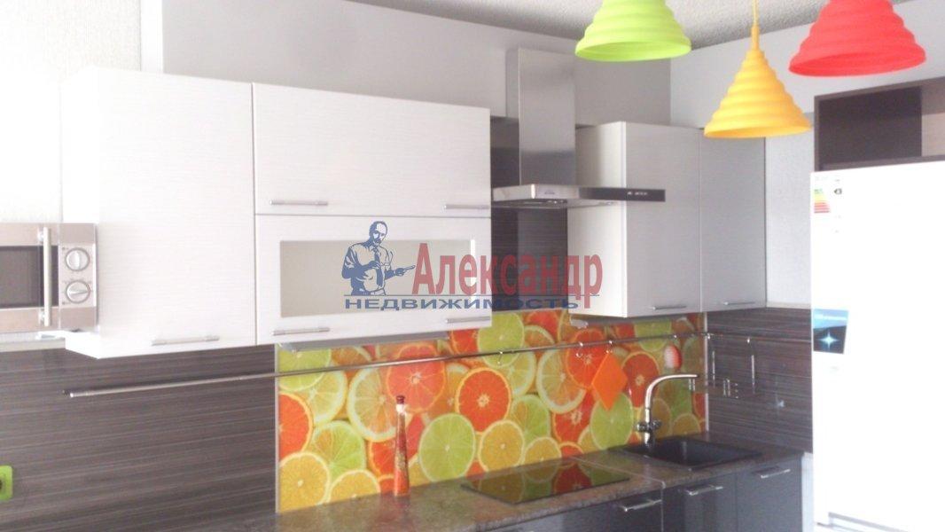 1-комнатная квартира (24м2) в аренду по адресу Шушары пос., Первомайская ул., 5— фото 1 из 7