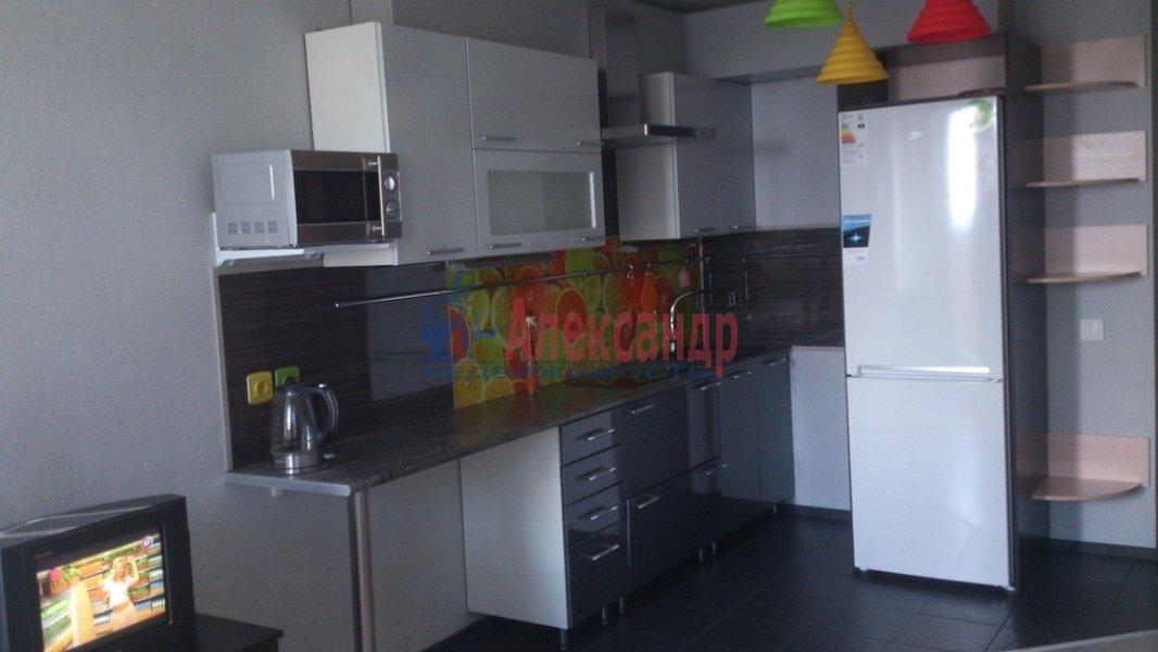 1-комнатная квартира (24м2) в аренду по адресу Шушары пос., Первомайская ул., 5— фото 2 из 7