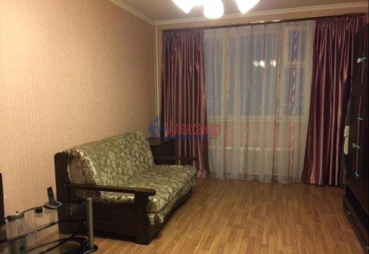 1-комнатная квартира (32м2) в аренду по адресу Ветеранов пр., 76— фото 2 из 4