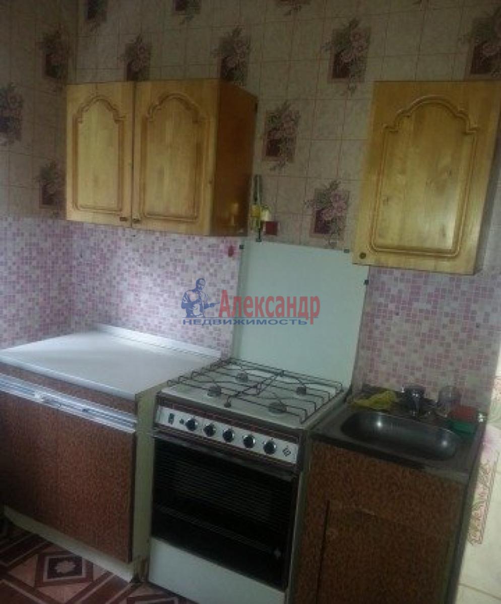 1-комнатная квартира (30м2) в аренду по адресу Псковская ул., 20— фото 2 из 3