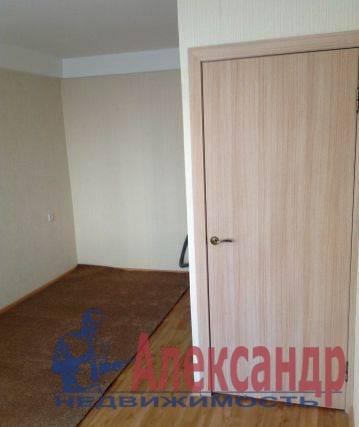 1-комнатная квартира (31м2) в аренду по адресу Просвещения просп., 104— фото 2 из 4
