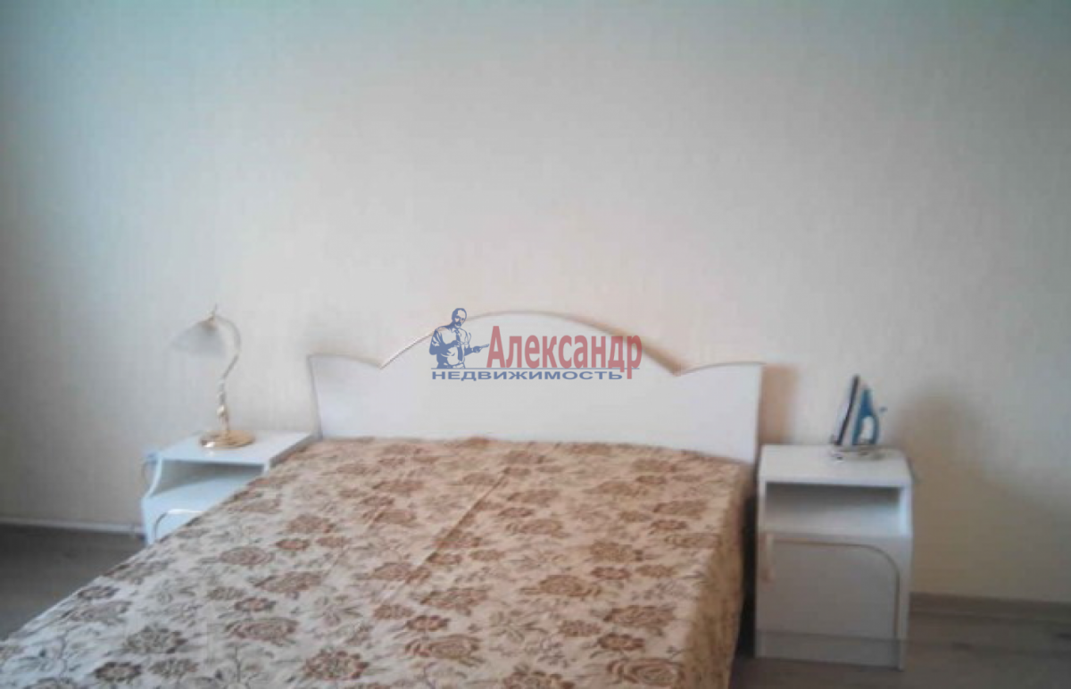 1-комнатная квартира (34м2) в аренду по адресу Бабушкина ул., 115— фото 3 из 6