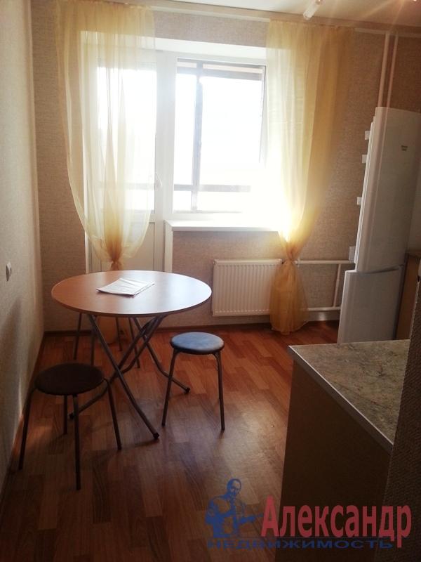 2-комнатная квартира (59м2) в аренду по адресу Космонавтов просп., 37— фото 7 из 11