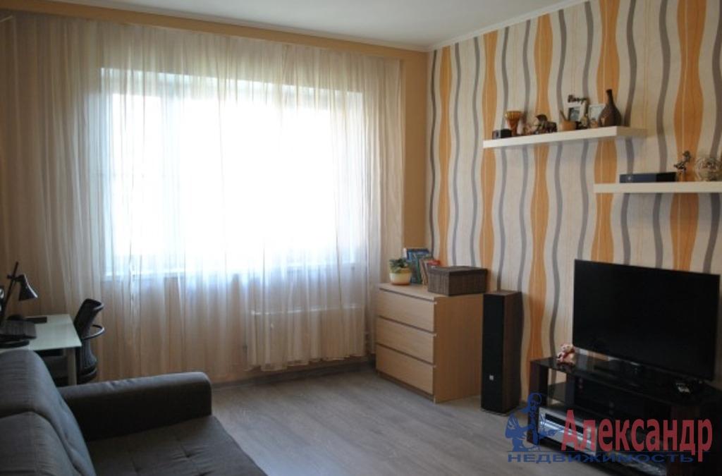 1-комнатная квартира (36м2) в аренду по адресу Гранитная ул., 58— фото 1 из 3