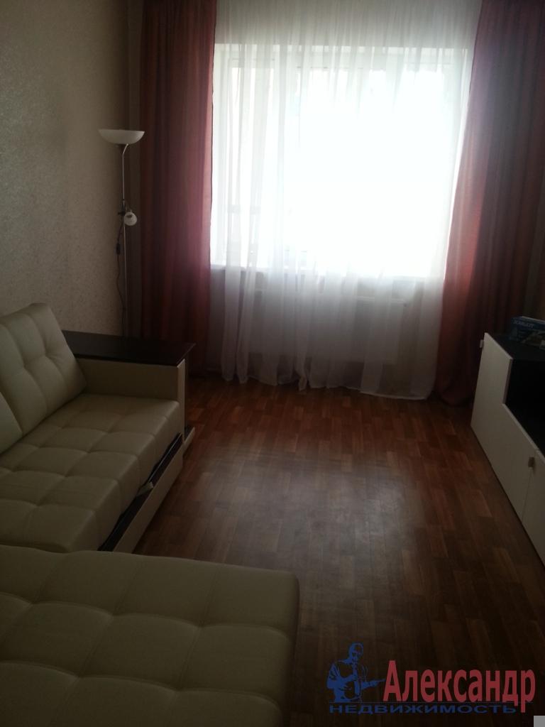 2-комнатная квартира (59м2) в аренду по адресу Космонавтов просп., 37— фото 10 из 11