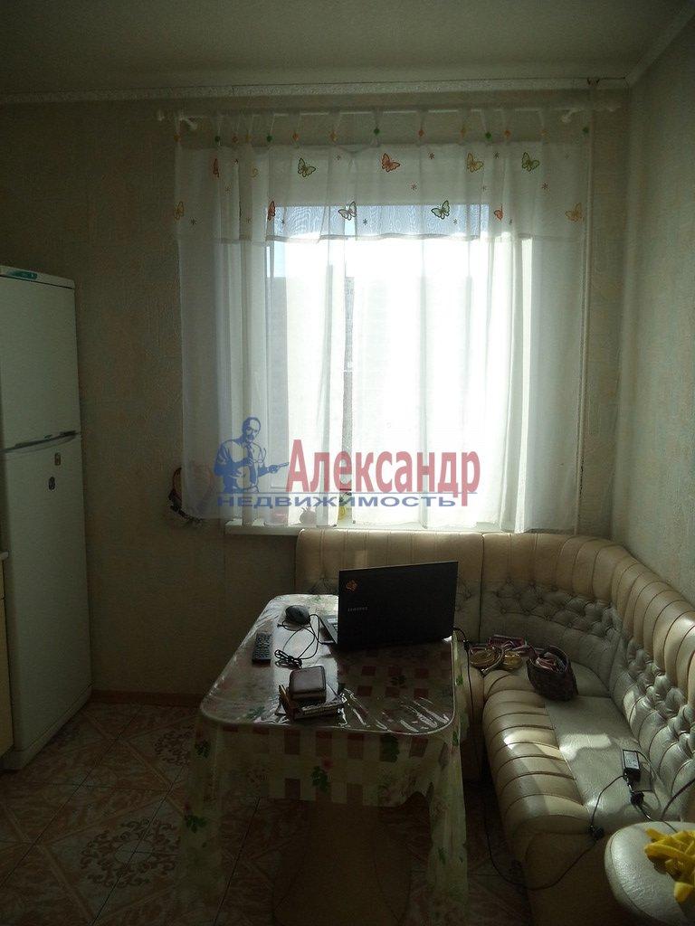 1-комнатная квартира (35м2) в аренду по адресу Ириновский пр., 29— фото 1 из 1
