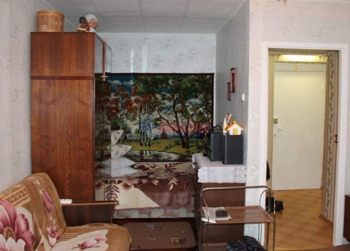 1-комнатная квартира (31м2) в аренду по адресу Ленинский пр., 117— фото 3 из 4