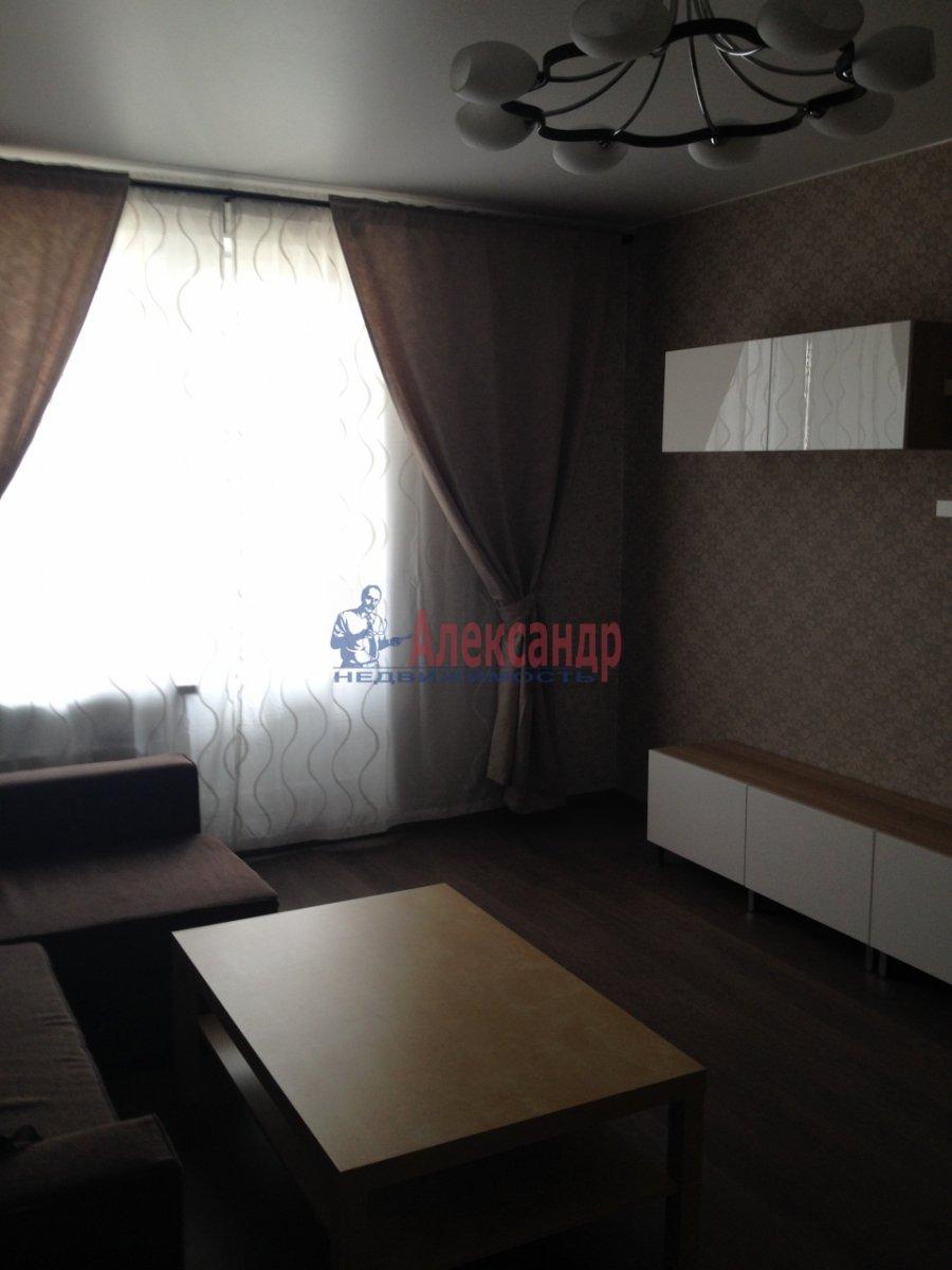 1-комнатная квартира (44м2) в аренду по адресу Просвещения просп., 99— фото 15 из 17