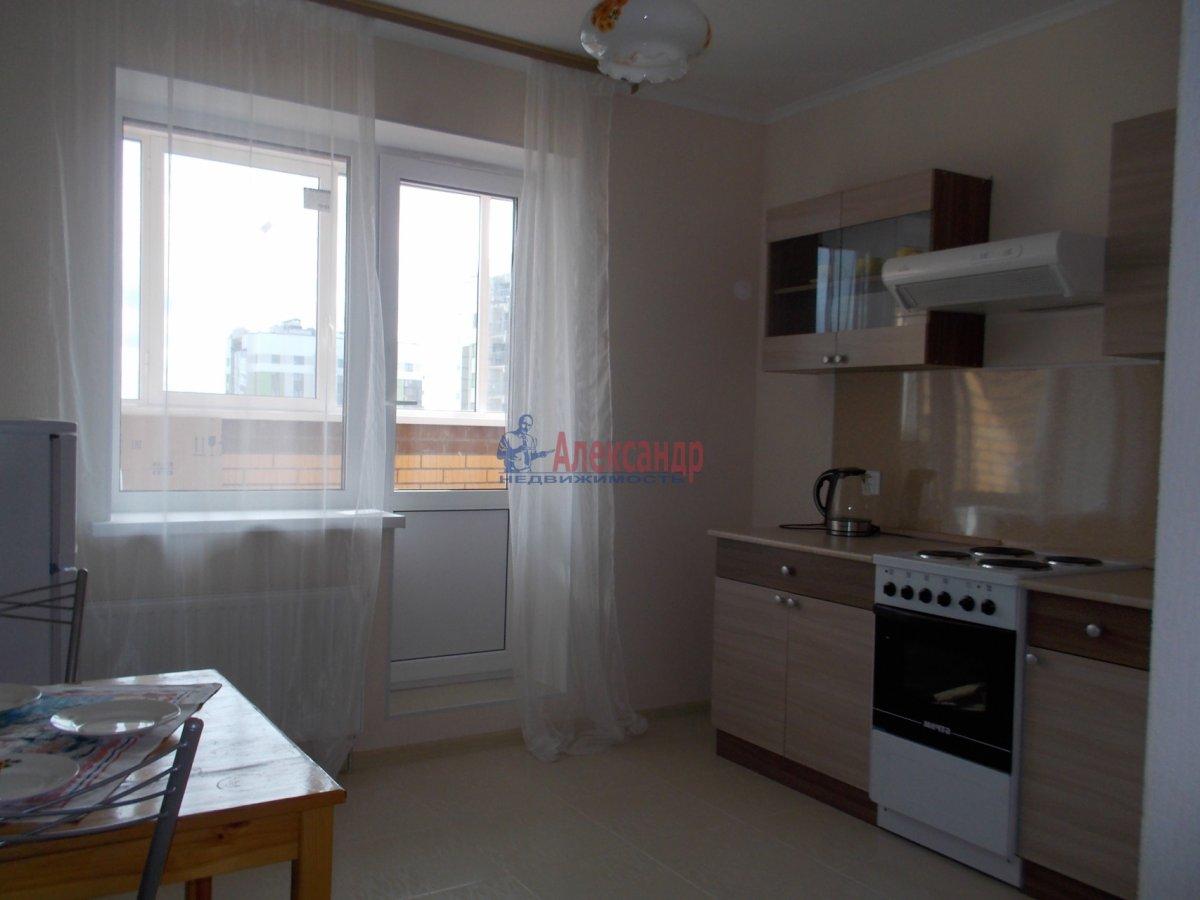 1-комнатная квартира (39м2) в аренду по адресу Кушелевская дор., 5— фото 2 из 9