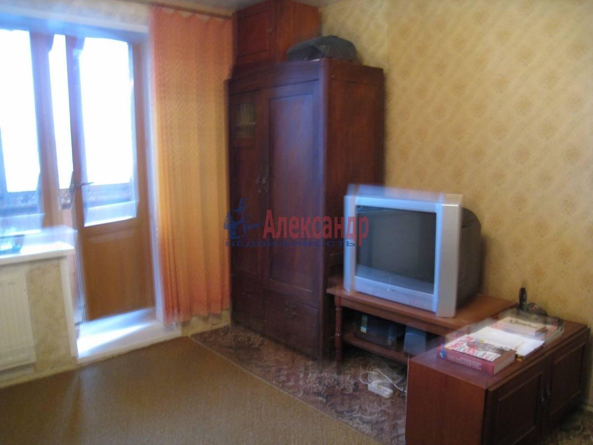 1-комнатная квартира (33м2) в аренду по адресу Просвещения пр., 54— фото 2 из 9