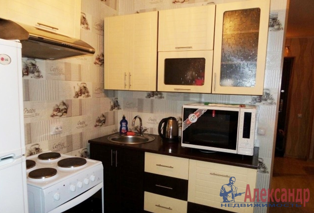 1-комнатная квартира (44м2) в аренду по адресу Большевиков пр., 38— фото 3 из 4