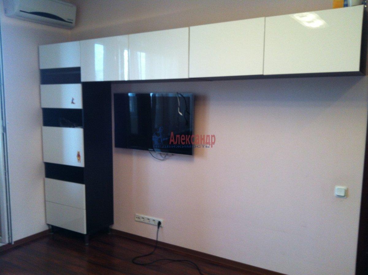 11-комнатная квартира (34м2) в аренду по адресу Комендантский пр., 29— фото 4 из 11