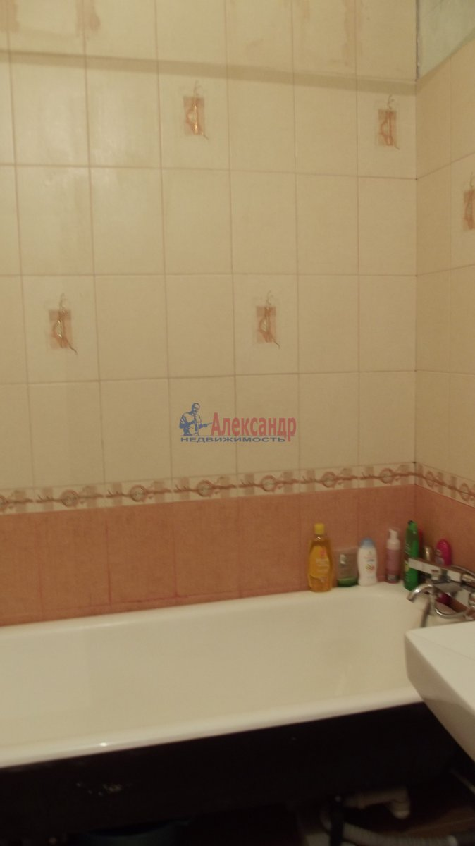 1-комнатная квартира (40м2) в аренду по адресу Костромской пр., 10— фото 2 из 3