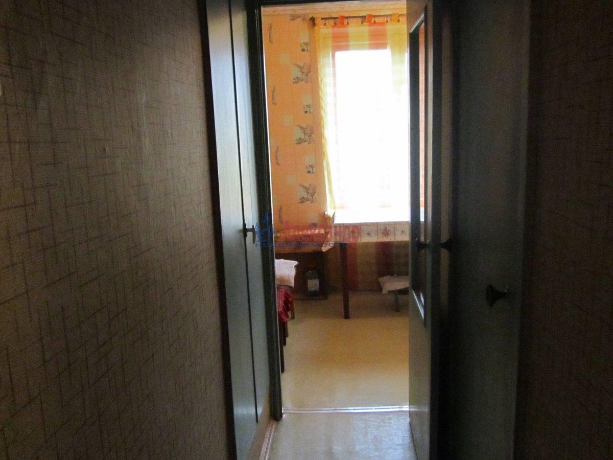1-комнатная квартира (40м2) в аренду по адресу Аптекарский пр., 10— фото 4 из 4