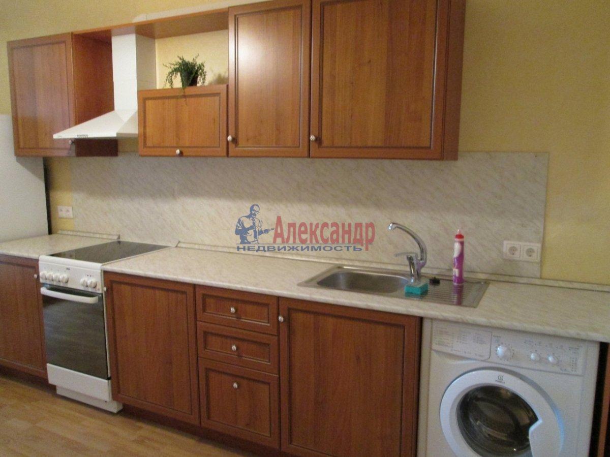 1-комнатная квартира (45м2) в аренду по адресу Коллонтай ул., 17— фото 7 из 9
