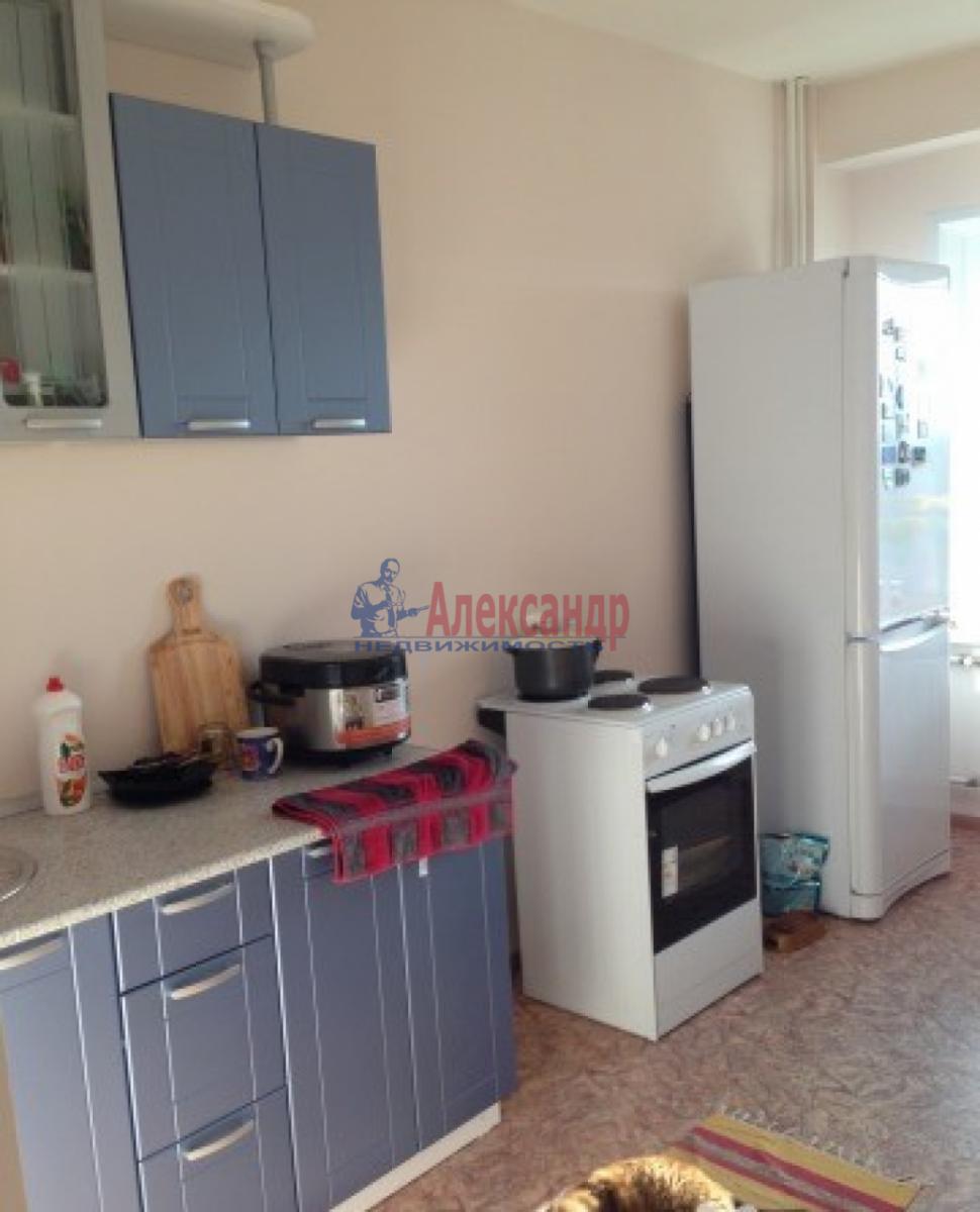 1-комнатная квартира (44м2) в аренду по адресу Дачный пр., 4— фото 1 из 3