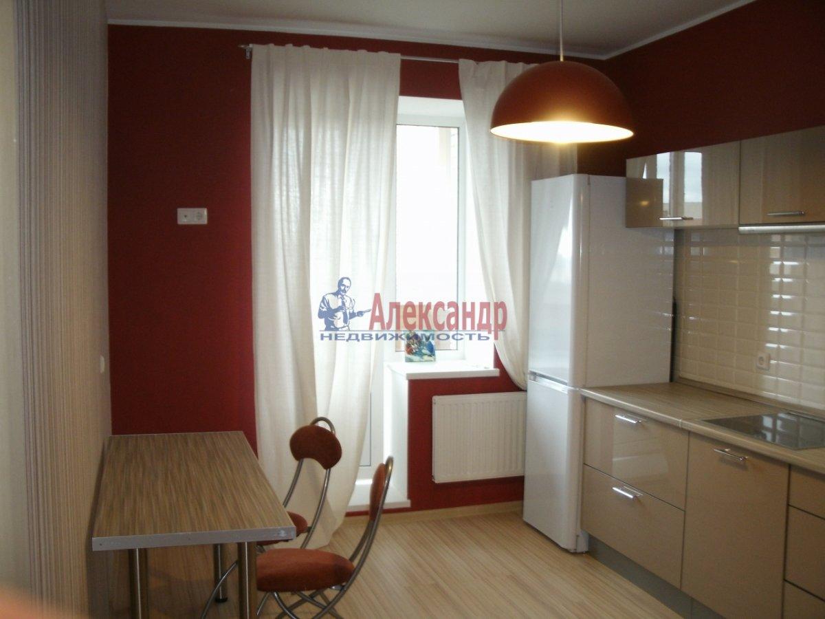 1-комнатная квартира (40м2) в аренду по адресу Просвещения просп., 99— фото 4 из 4