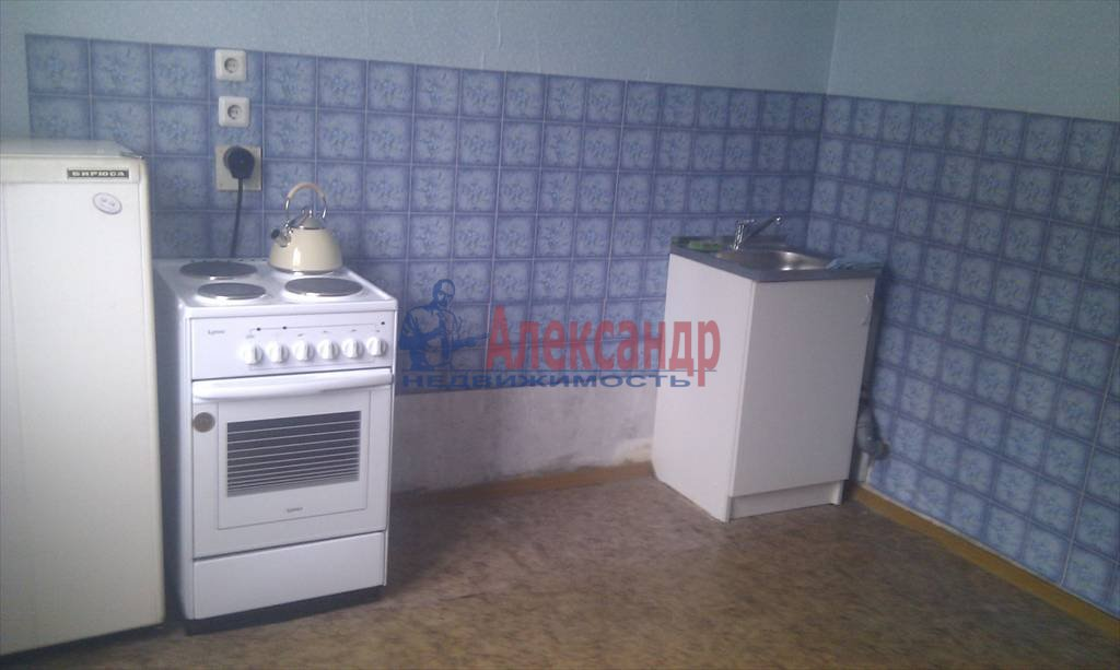 1-комнатная квартира (40м2) в аренду по адресу Косыгина пр., 32— фото 2 из 4